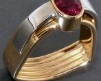 anello anelv